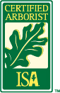 Why Hire A Certified Arborist?